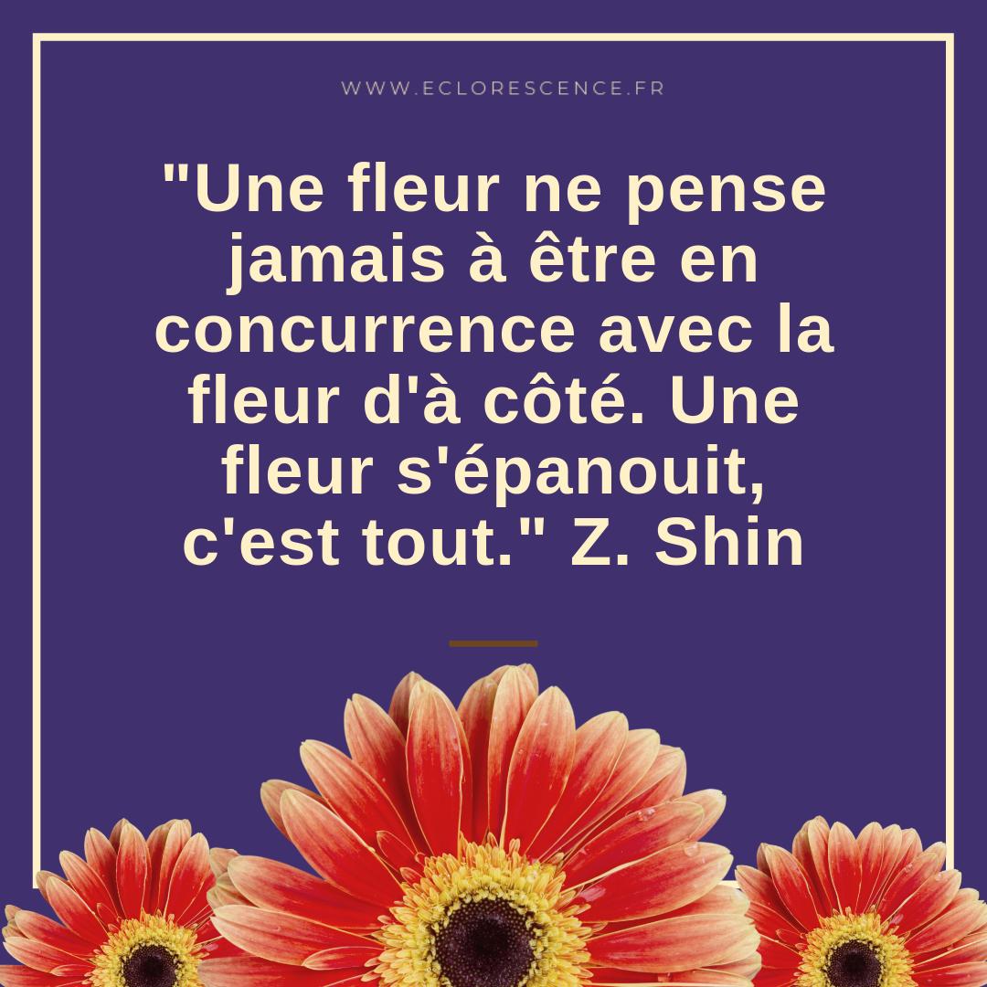 citation Shin